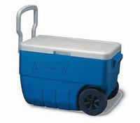 Camp cooler with wheels