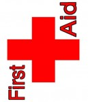 First Aid for Camping with Kids